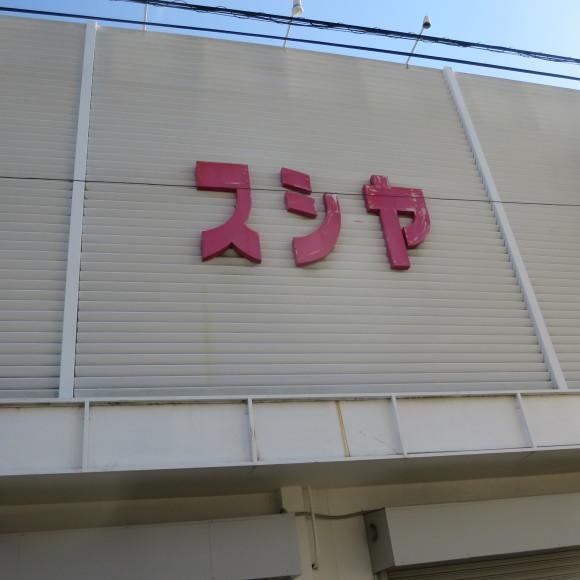 猫窓と金魚、そのまま 大和郡山市にて_c0001670_17015234.jpg
