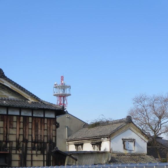 猫窓と金魚、そのまま 大和郡山市にて_c0001670_17015480.jpg