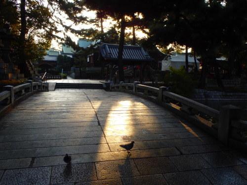 OSAKA CITY RIDE_a0345079_14042241.jpg