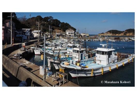 漁港_b0171104_20200182.jpg