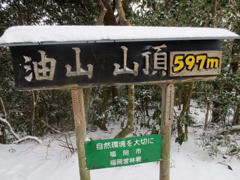 ■「犬は歓び庭駆け回り…」風の積雪油山行_d0190217_17492098.jpg