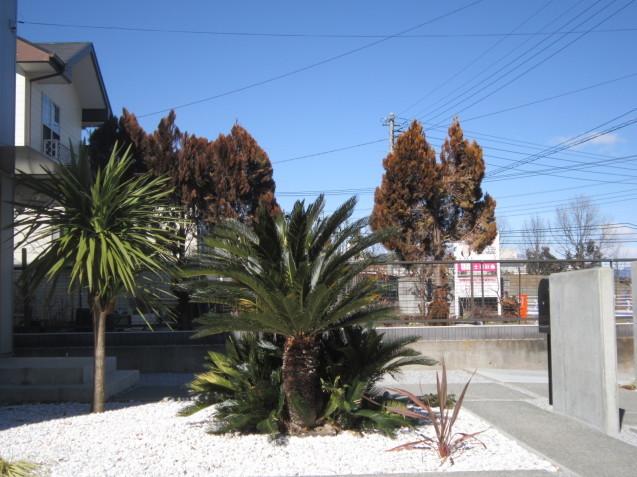 伊勢崎市 でのエクステリア工事 O 邸 昨年中に完了してますm(__)m_e0361918_14361544.jpg