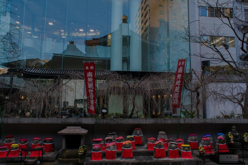 六角堂の寒牡丹_e0363038_145270.jpg
