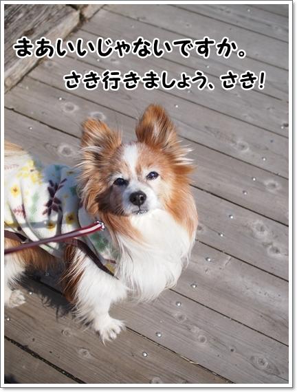 d0013149_00163227.jpg