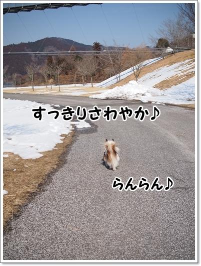 d0013149_00164428.jpg