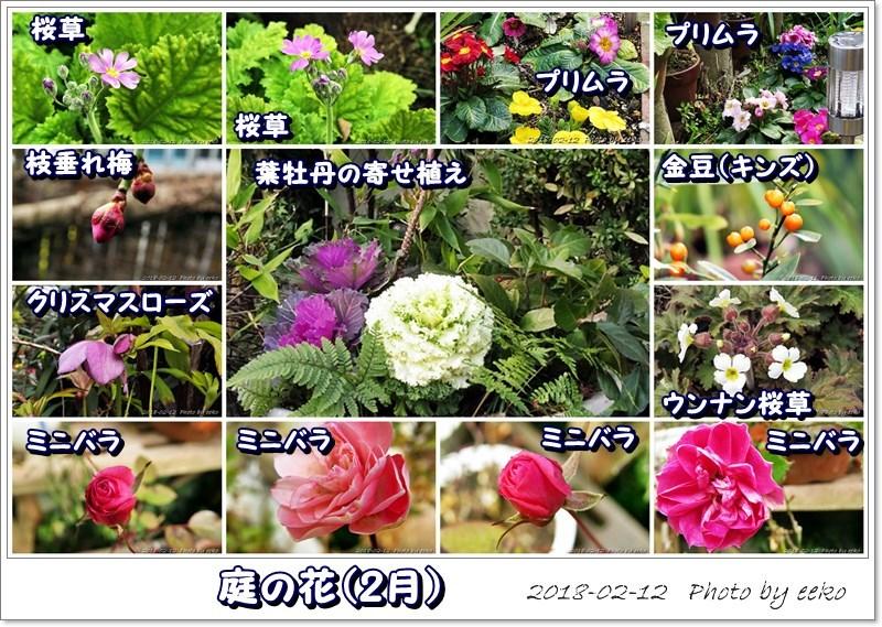 f0104569_19473101.jpg