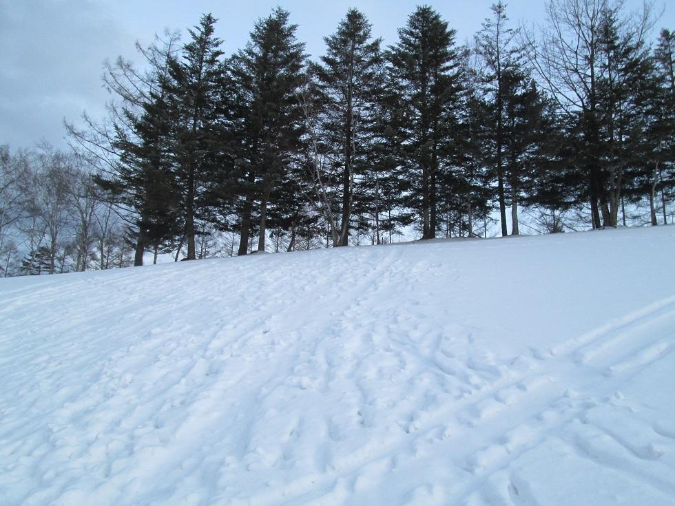 ひとり爆雪RUN in 浅間高原_f0180878_19490332.jpg