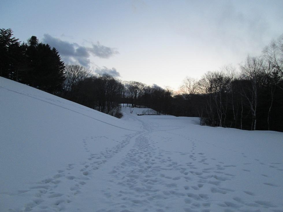 ひとり爆雪RUN in 浅間高原_f0180878_19491839.jpg