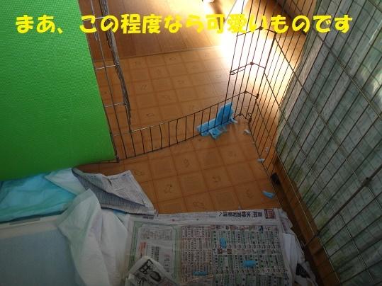 f0121712_06225103.jpg