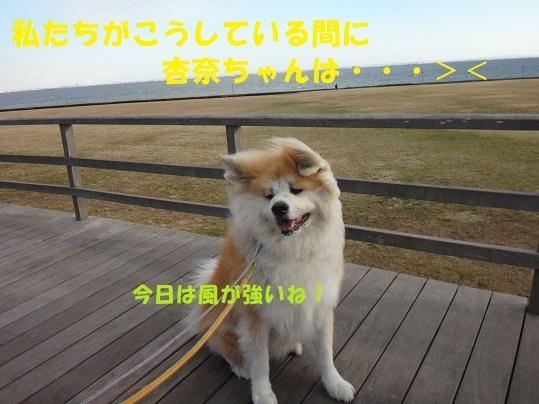 f0121712_08453971.jpg