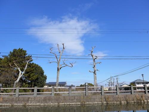 福岡柳川でこたつ船に乗る。①_f0232060_15234179.jpg