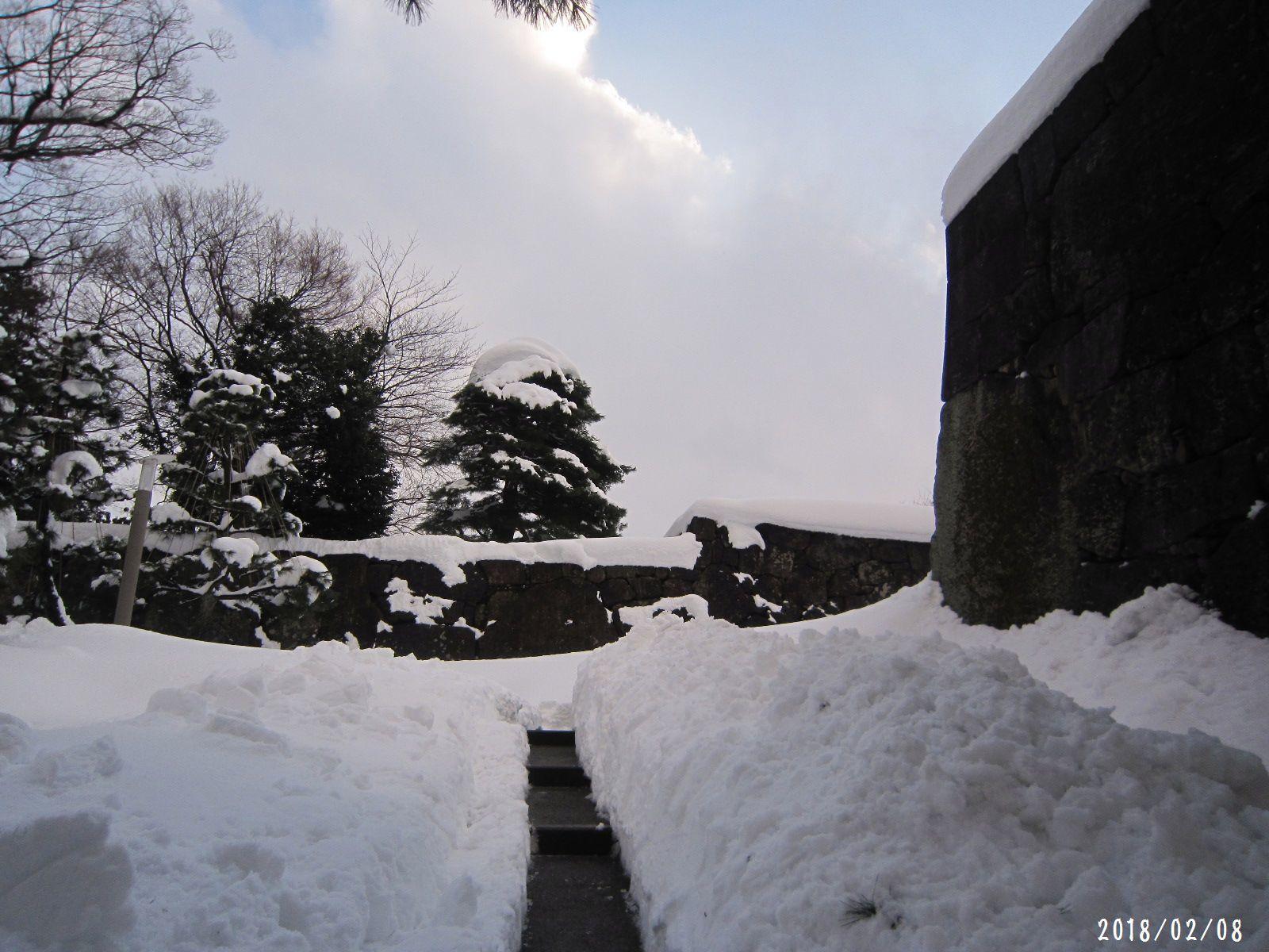 町内道路もすっきり☆ 春一番 も吹きました❀(2月20日追記あり)_a0207574_23293738.jpg