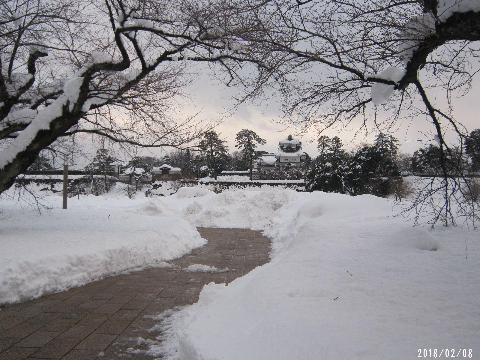町内道路もすっきり☆ 春一番 も吹きました❀(2月20日追記あり)_a0207574_23303497.jpg