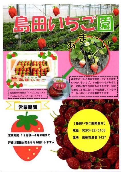 高萩のイチゴ~♪といえば_b0197678_15401443.jpg