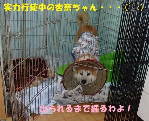 f0121712_14224272.jpg