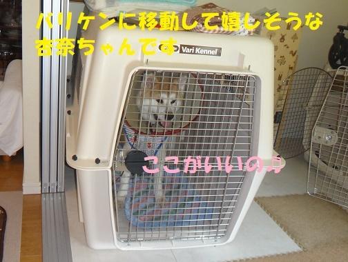 f0121712_14325368.jpg