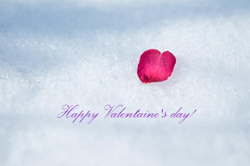 Happy Valentine\'s day_d0148187_10062831.jpg