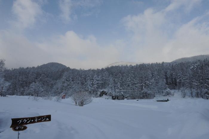 一色の森 雪中チャンプ 3_a0049296_19405624.jpg