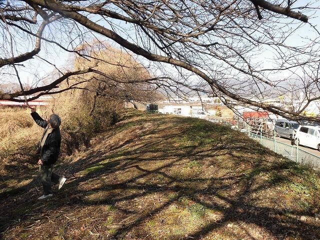 「竹の1m切り」って知ってますか? 滝川の竹林の退治計画を現場で試し刈り_f0141310_00240606.jpg