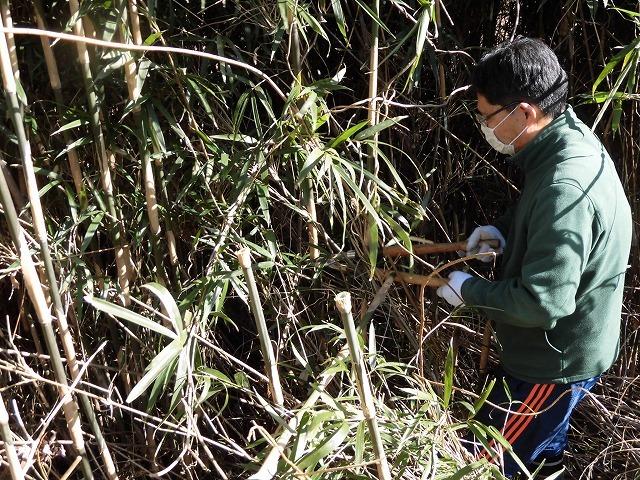 「竹の1m切り」って知ってますか? 滝川の竹林の退治計画を現場で試し刈り_f0141310_00241974.jpg