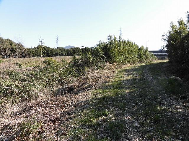 「竹の1m切り」って知ってますか? 滝川の竹林の退治計画を現場で試し刈り_f0141310_00245967.jpg