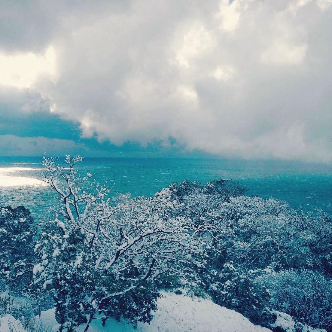 雪と日本海のコラボレーション_c0007246_21273083.jpg