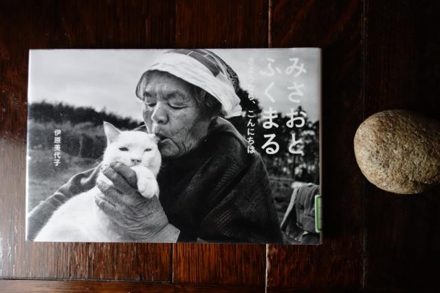 猫の刺繍_d0101846_07544416.jpeg