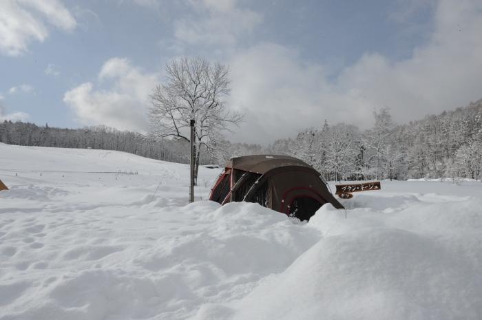 一色の森 雪中チャンプ 3_a0049296_19405414.jpg
