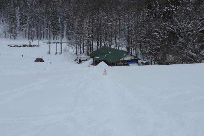 一色の森 雪中キャンプ 4_a0049296_20244020.jpg