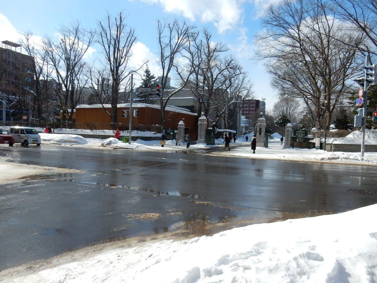 中央ローンの雪だるままつり_c0025115_23081014.jpg