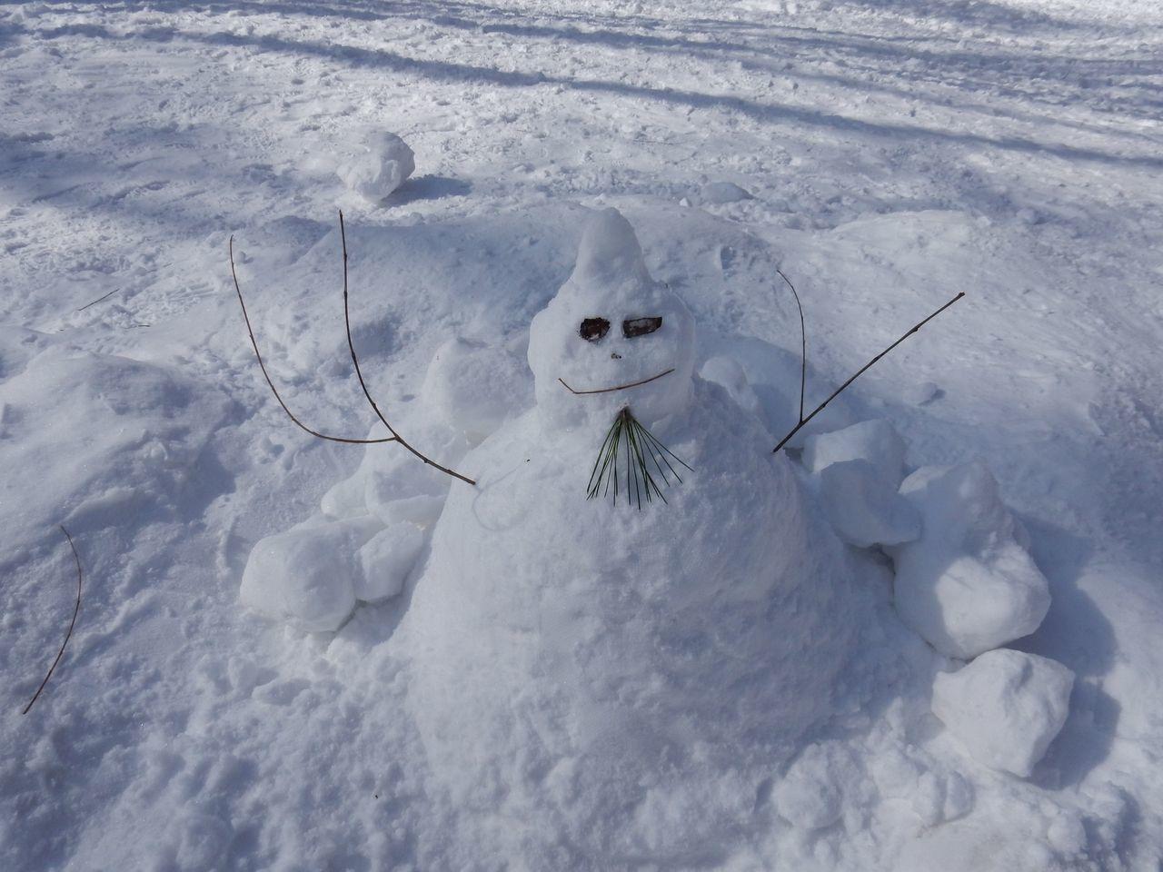 中央ローンの雪だるままつり_c0025115_23081969.jpg