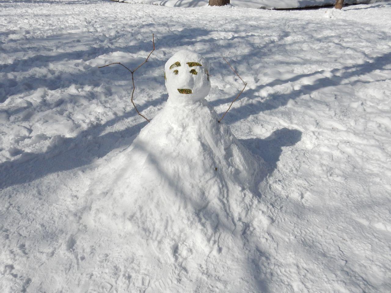中央ローンの雪だるままつり_c0025115_23082717.jpg