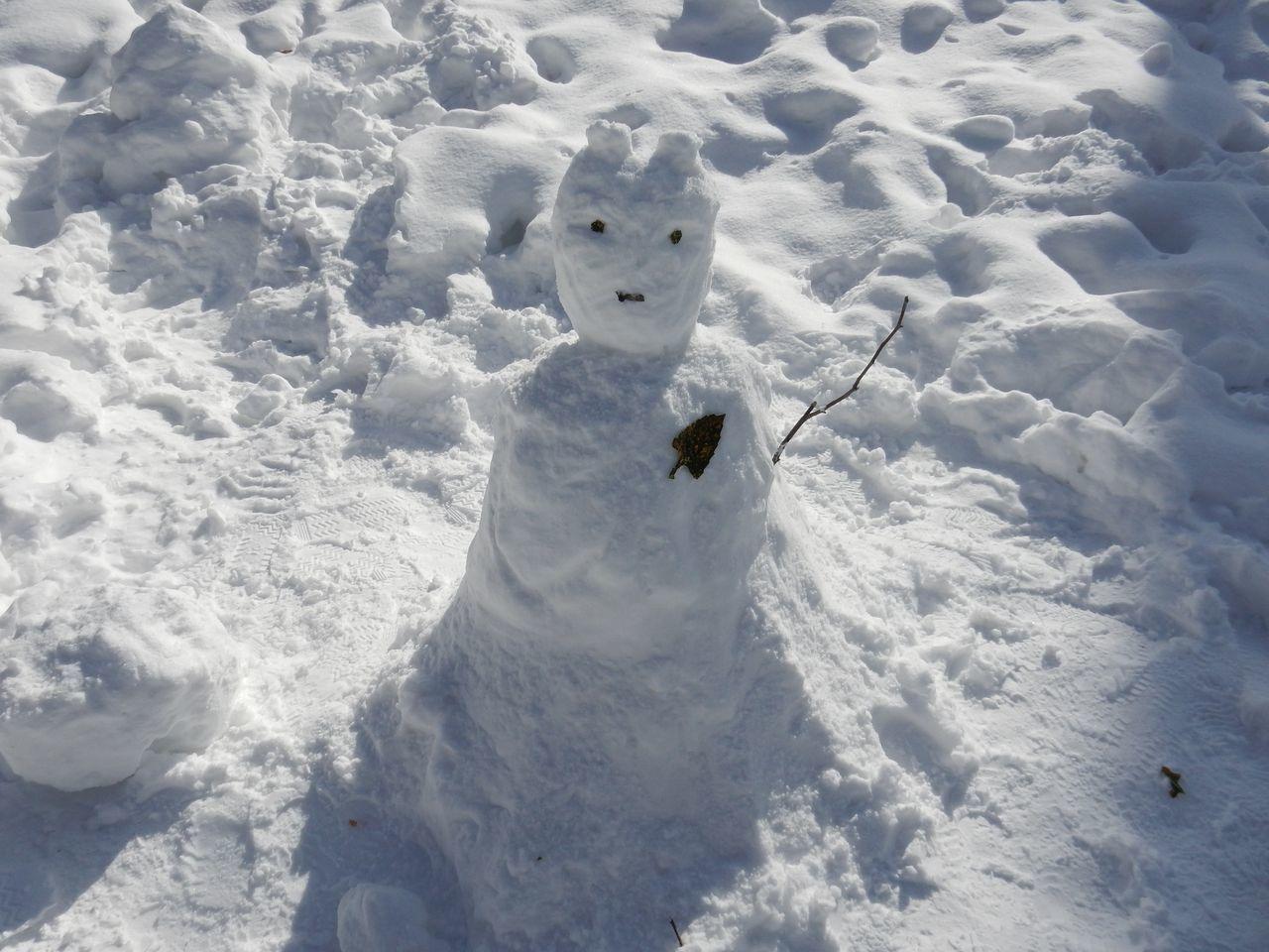 中央ローンの雪だるままつり_c0025115_23083004.jpg