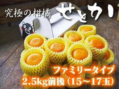 究極の柑橘「せとか」 令和2年出荷予定分はいよいよ残りわずか!ご注文はお急ぎください!_a0254656_18223715.jpg