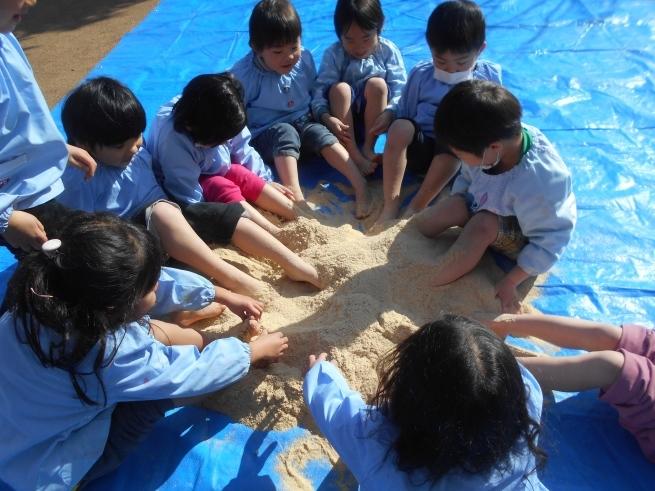 質の良い腐葉土を作る → 米ぬかボカシ_f0334882_18392382.jpg
