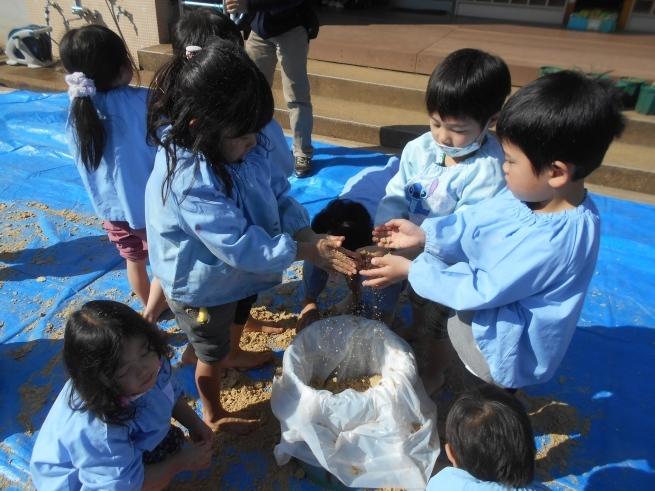 質の良い腐葉土を作る → 米ぬかボカシ_f0334882_18404098.jpg
