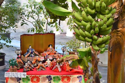 杏里ファームのおひなまつりに片野聡さんが登場♪♪_f0236594_23022368.jpg