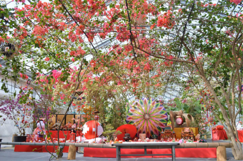 杏里ファームのおひなまつりに片野聡さんが登場♪♪_f0236594_23022583.jpg