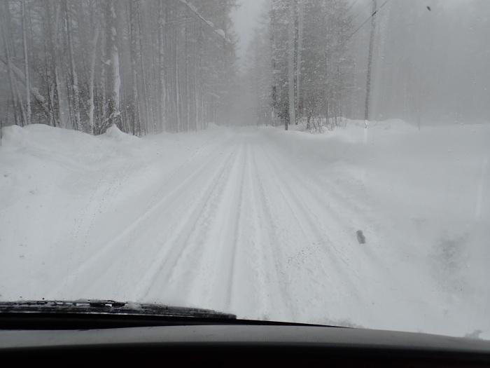 一色の森 雪中キャンプ 5_a0049296_18234378.jpg