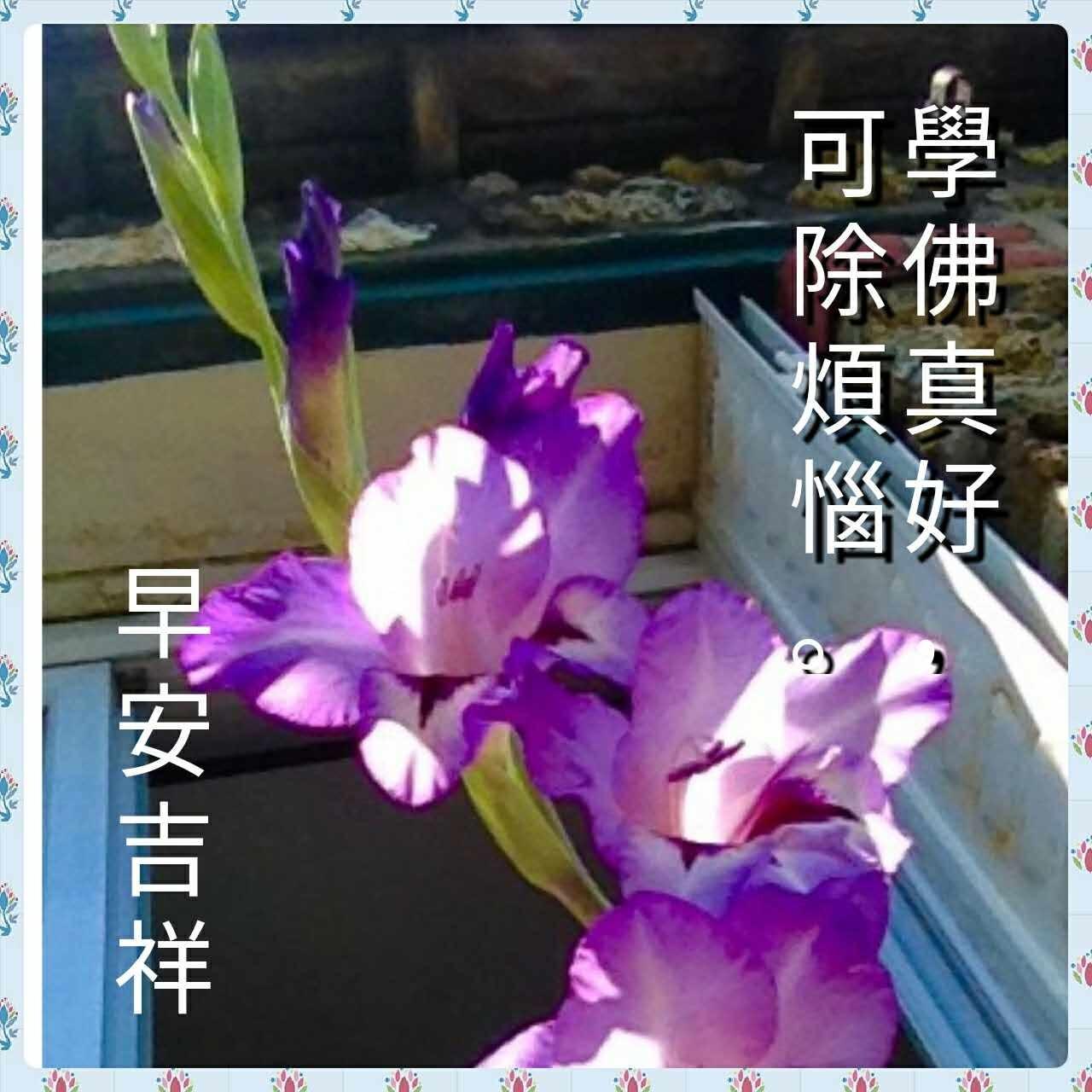 b0348023_09142144.jpg