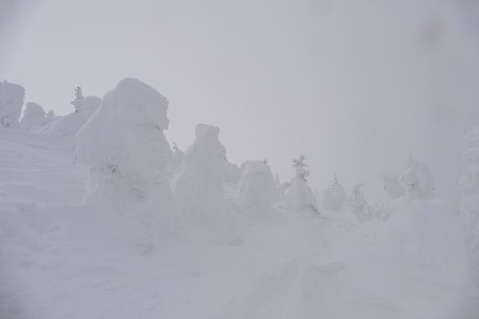 山形県山形市蔵王温泉スキー場 「樹 氷」_d0106628_14564514.jpg
