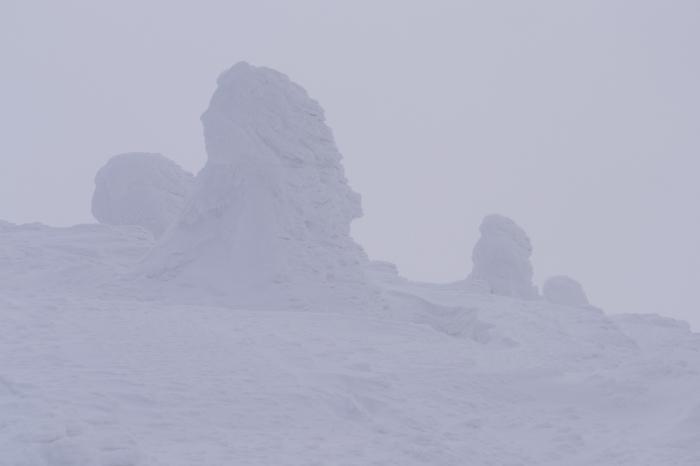 山形県山形市蔵王温泉スキー場 「樹 氷」_d0106628_14571376.jpg