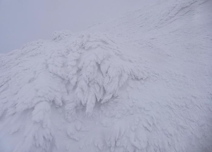 山形県山形市蔵王温泉スキー場 「樹 氷」_d0106628_14590322.jpg