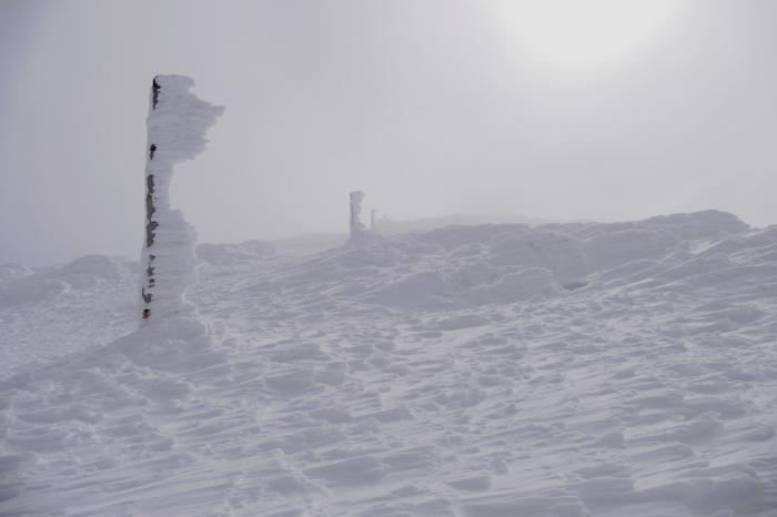 山形県山形市蔵王温泉スキー場 「樹 氷」_d0106628_14592157.jpg