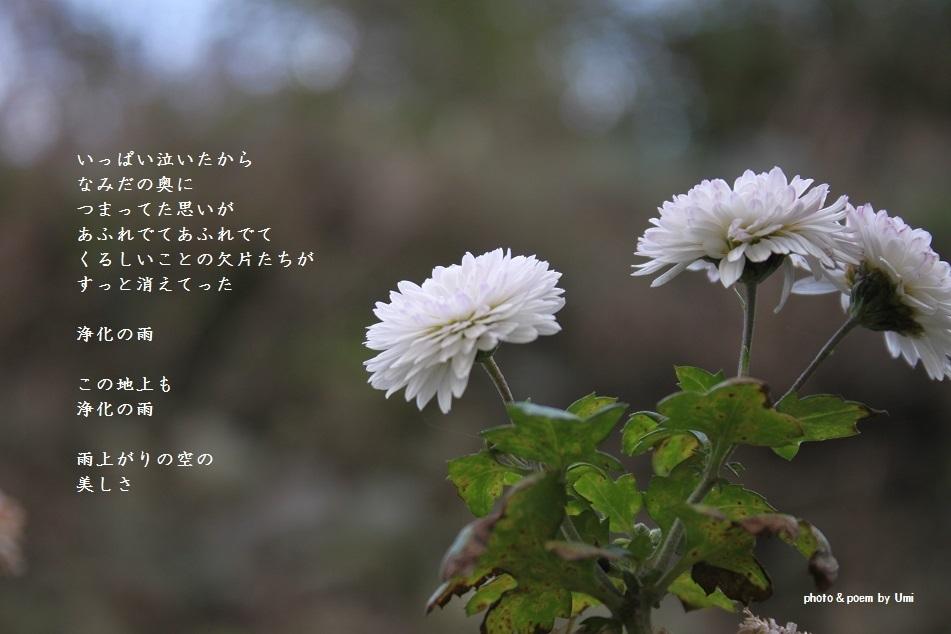 f0351844_22212912.jpg