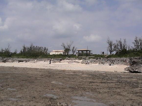牛の島、黒島!_a0268377_21365012.jpg