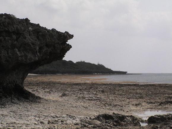牛の島、黒島!_a0268377_21370063.jpg