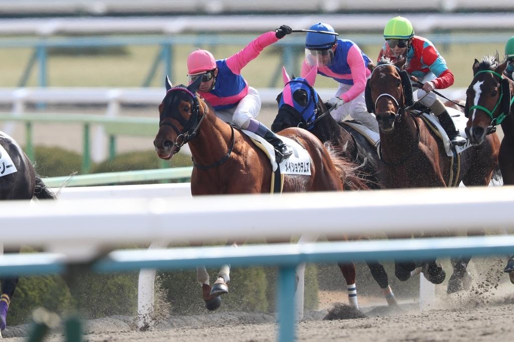 2018年2月17日 京都牝馬S(GⅢ)_f0204898_23321368.jpg
