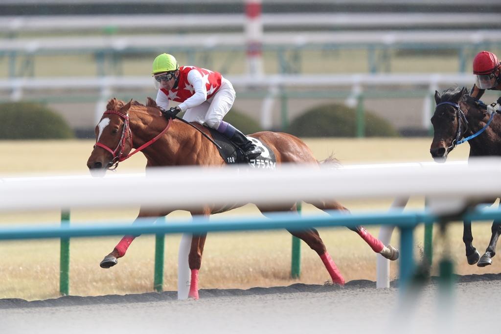 2018年2月17日 京都牝馬S(GⅢ)_f0204898_23333864.jpg