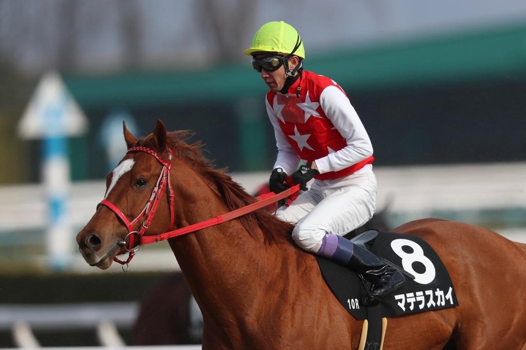 2018年2月17日 京都牝馬S(GⅢ)_f0204898_23335899.jpg